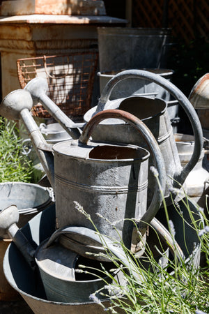 French Watering Cans