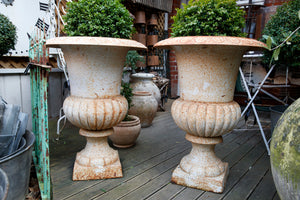 French Cast Iron Urns - White Patina