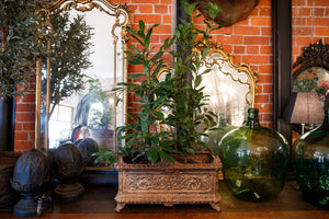 Beautiful 19th Century French Iron Jardinere