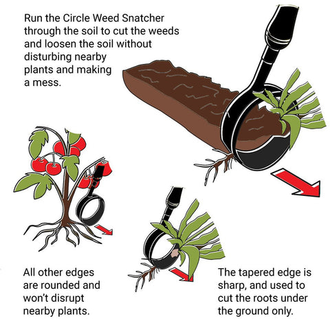 Circle Weed Snatcher - Ruppert Garden Tools, LLC