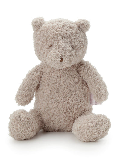 Teddy Bear Tissue Case