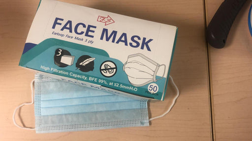 Pleated Face Mask 50 masks/box