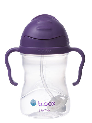 NEW B Box sippy cup - Grape