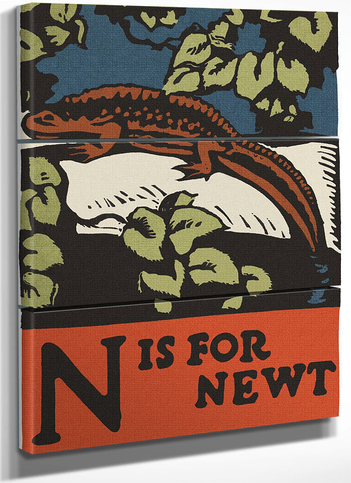 Alphabet  N Is For Newt By C.B. Falls