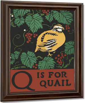 Alphabet  Q Is For Quail By C.B. Falls