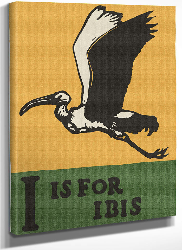 Alphabet I Is For Ibis By C.B. Falls