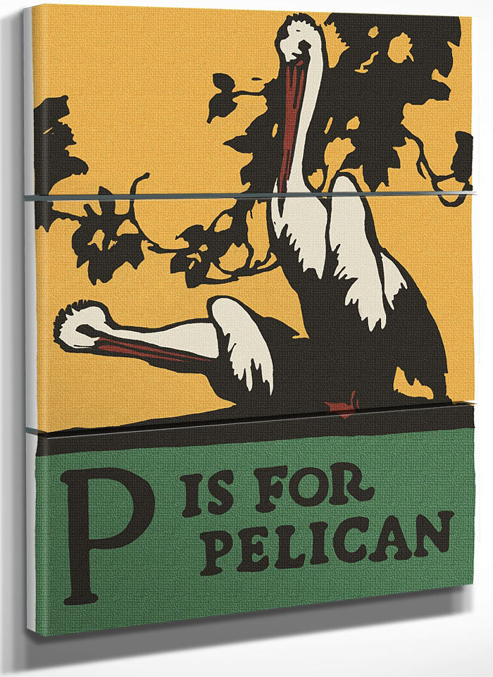 Alphabet P Is For Pelican By C.B. Falls