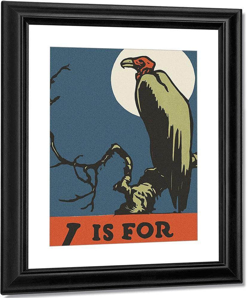 Alphabet V Is For Vulture By C.B. Falls