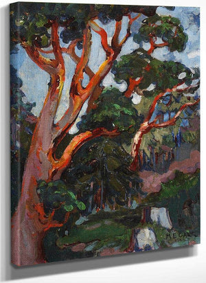 Arbutus Tree 1922 By Emily Carr