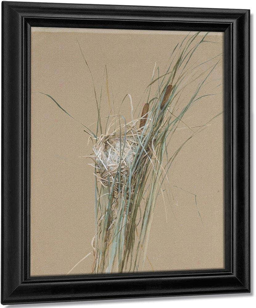Bird's Nest In Cattails By Fidelia Bridges