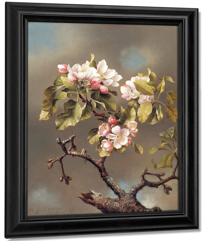 Branch Of Apple Blossoms Against A Cloudy Sky By Martin Johnson Heade