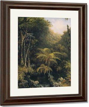 Brazilian Forest By Martin Johnson Heade