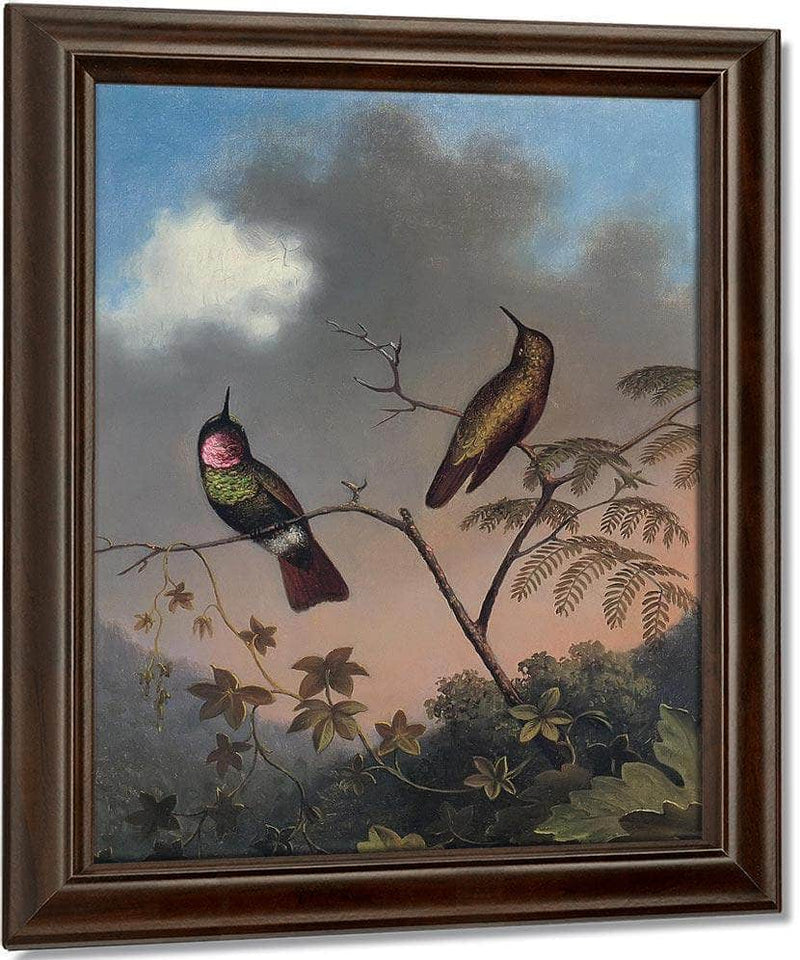 Brazilian Ruby By Martin Johnson Heade