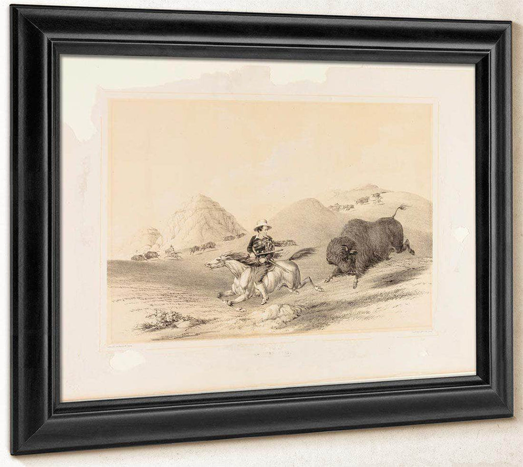Buffalo Hunt Chasing Back No. 12 By George Catlin