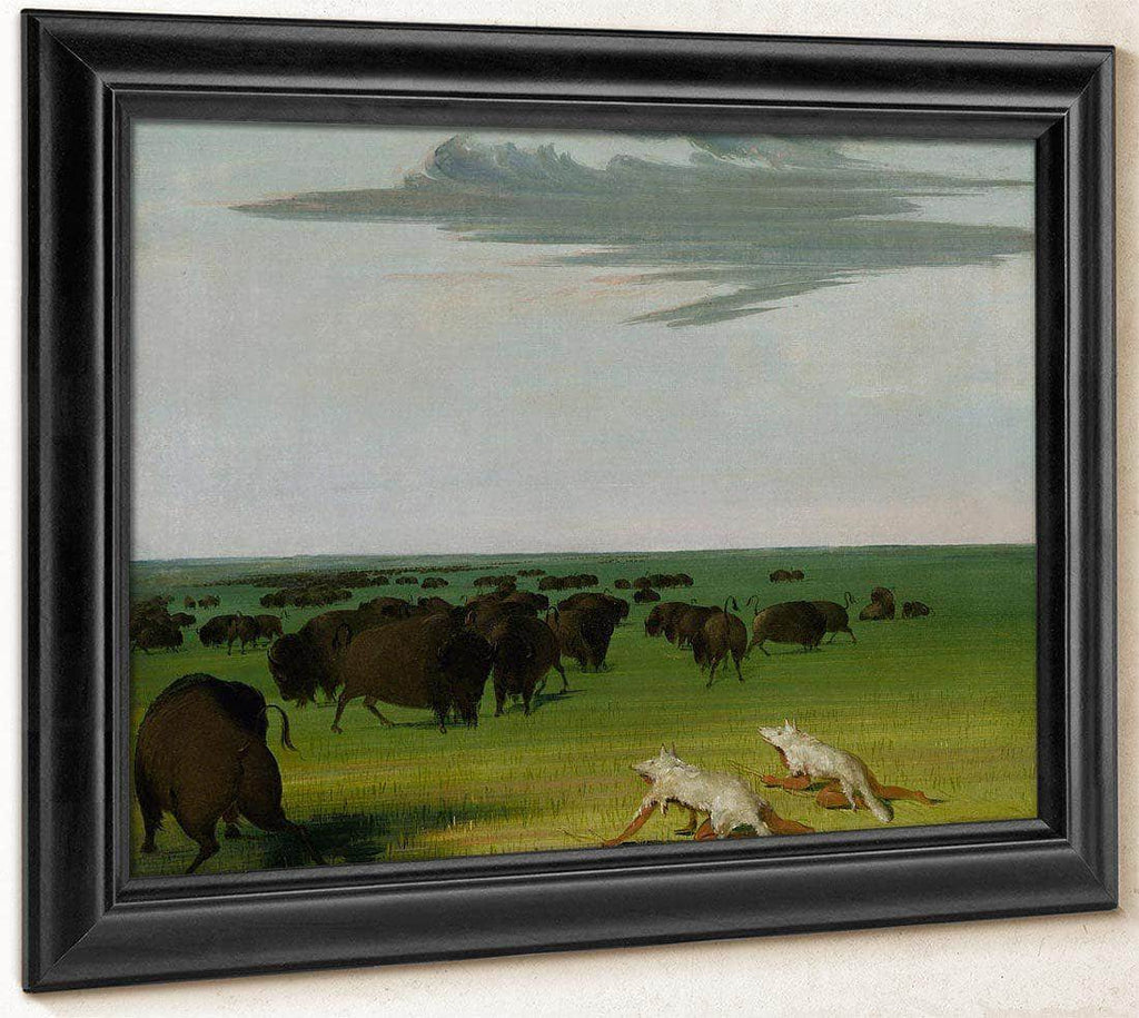 Buffalo Hunt Under The Wolf Skin Mask By George Catlin