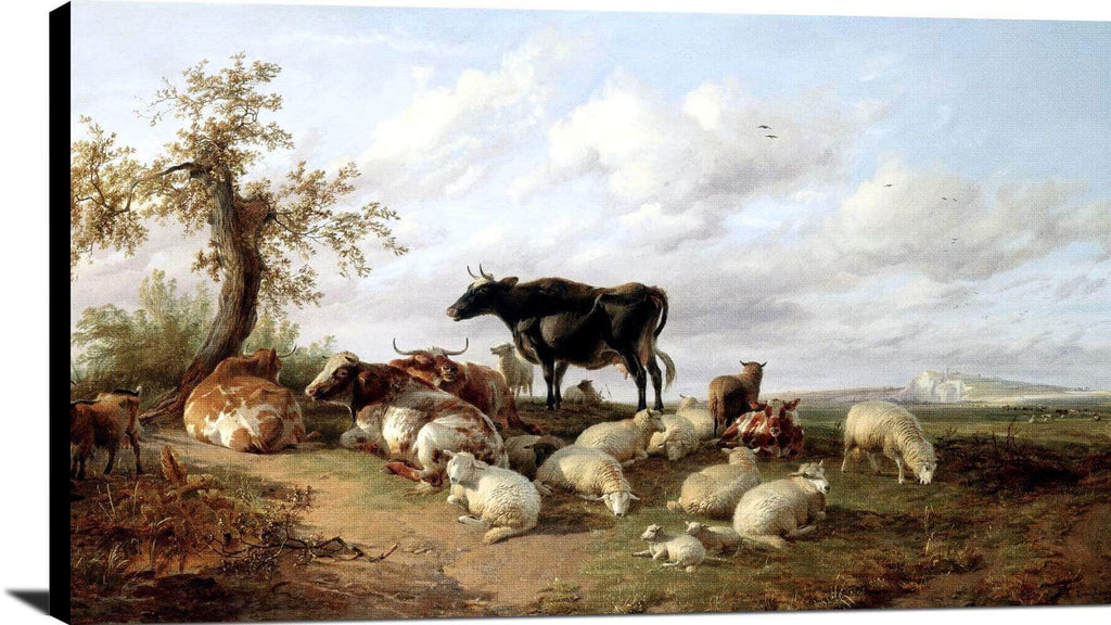 Cattle Sheep Goats In A Canterbury Meadow Painting Thomas Cooper Canvas Art