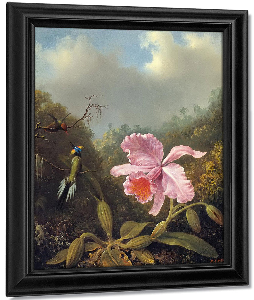 Fighting Hummingbirds With Pink Orchid By Martin Johnson Heade