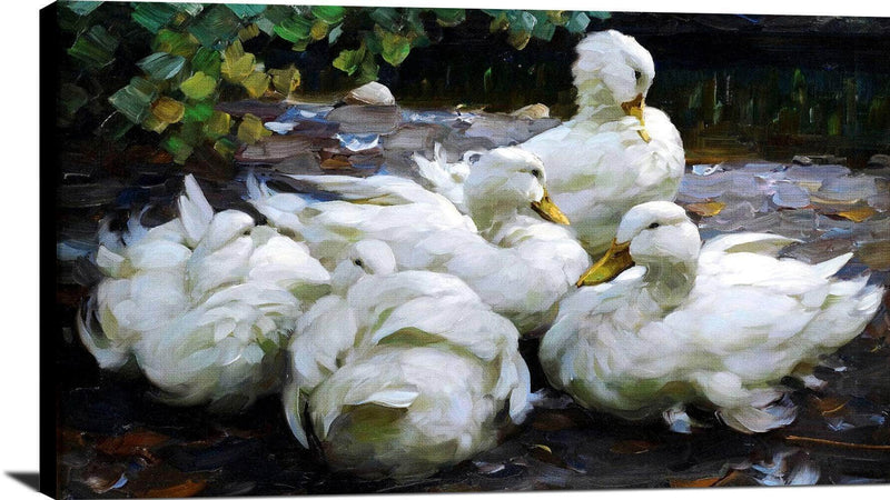 Five Dormant White Ducks Painting Alexander Max Koester Canvas Art