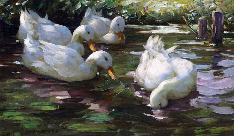 Four Ducks On The Pond Painting Alexander Max Koester Canvas Art