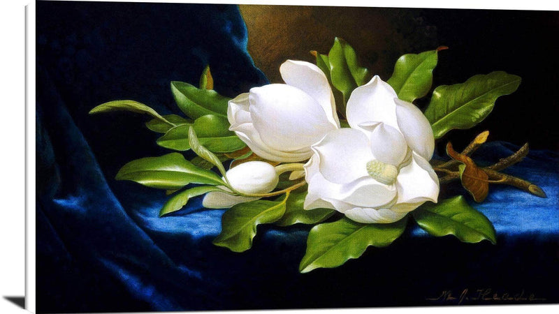 Giant Magnolias On A Blue Velvet Cloth Painting Martin Heade Canvas Art