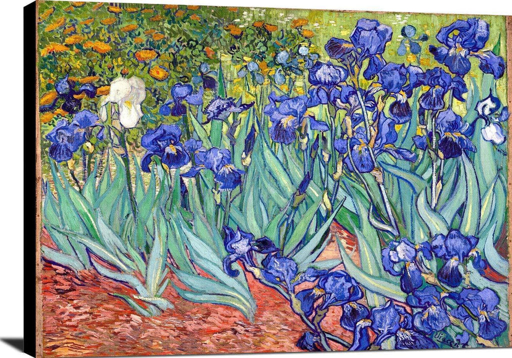 Irises Painting Vincent Van Gogh Canvas Art