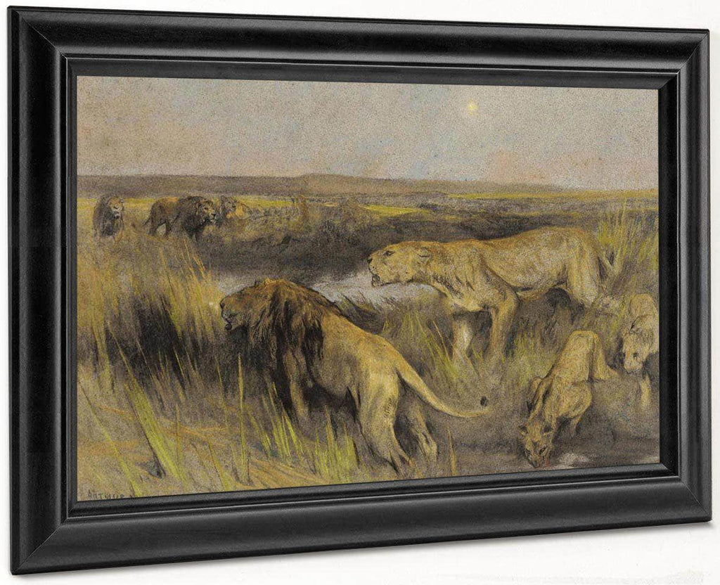 Lions In The Savannah By Arthur Wardle