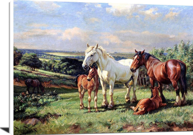 Mares And Foals In A Rolling English Country Painting Wright Barker Canvas Art