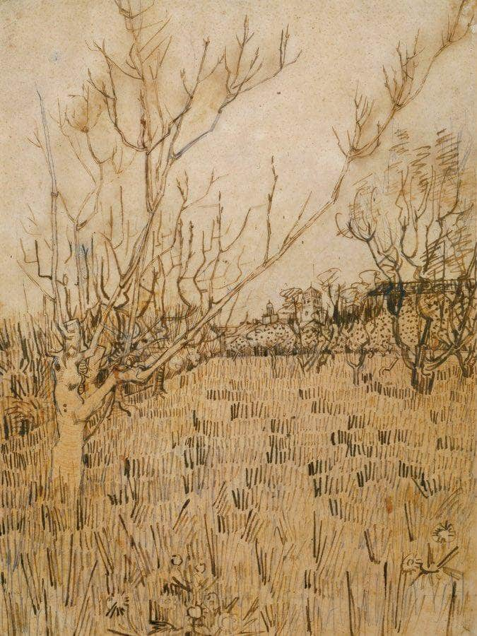 Orchard With Arles In The Background By Vincent Van Gogh