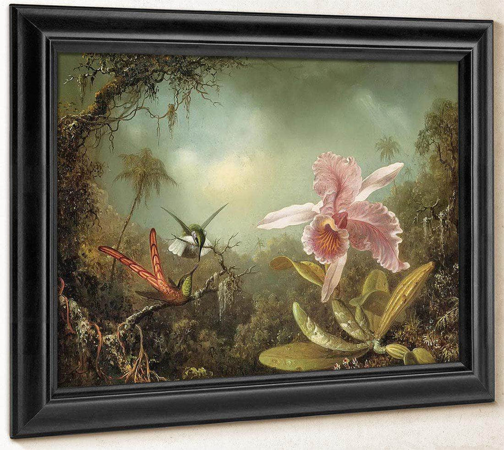 Orchid With Two Hummingbirds By Martin Johnson Heade