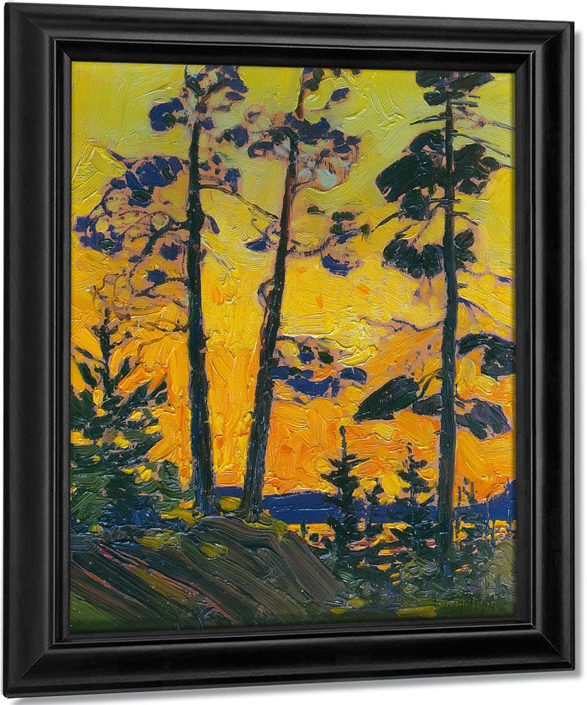 Pine Trees At Sunset By Tom Thomson
