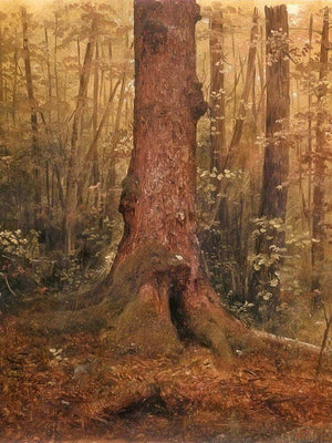 Probably Main Landscape In The Woods By Frederic Edwin Church