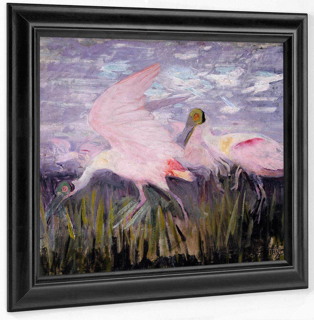 Roseate Spoonbills, Study For Book Concealing Coloration In The Animal Kingdom By Abbott Handerson Thayer