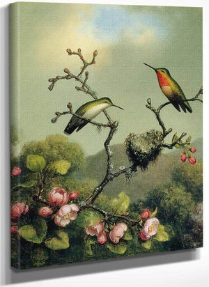 Ruby Throat Of North America By Martin Johnson Heade