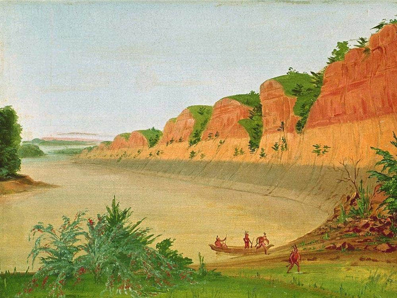 South Side Of Buffalo Island, Showing Buffalo Berries In The Foreground By George Catlin