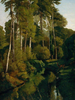 Stream In The Forest By Gusave Courbet