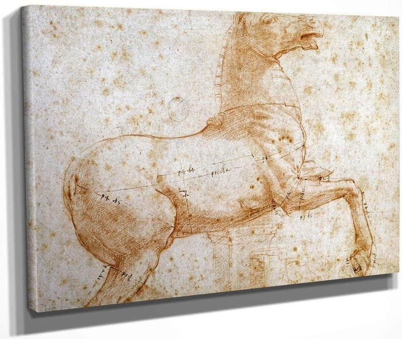 Study Of One Of The Quirinal Marble Horses By Raphael