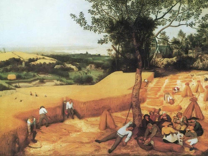 The Corn Harvest 1565 By Pieter Bruegel