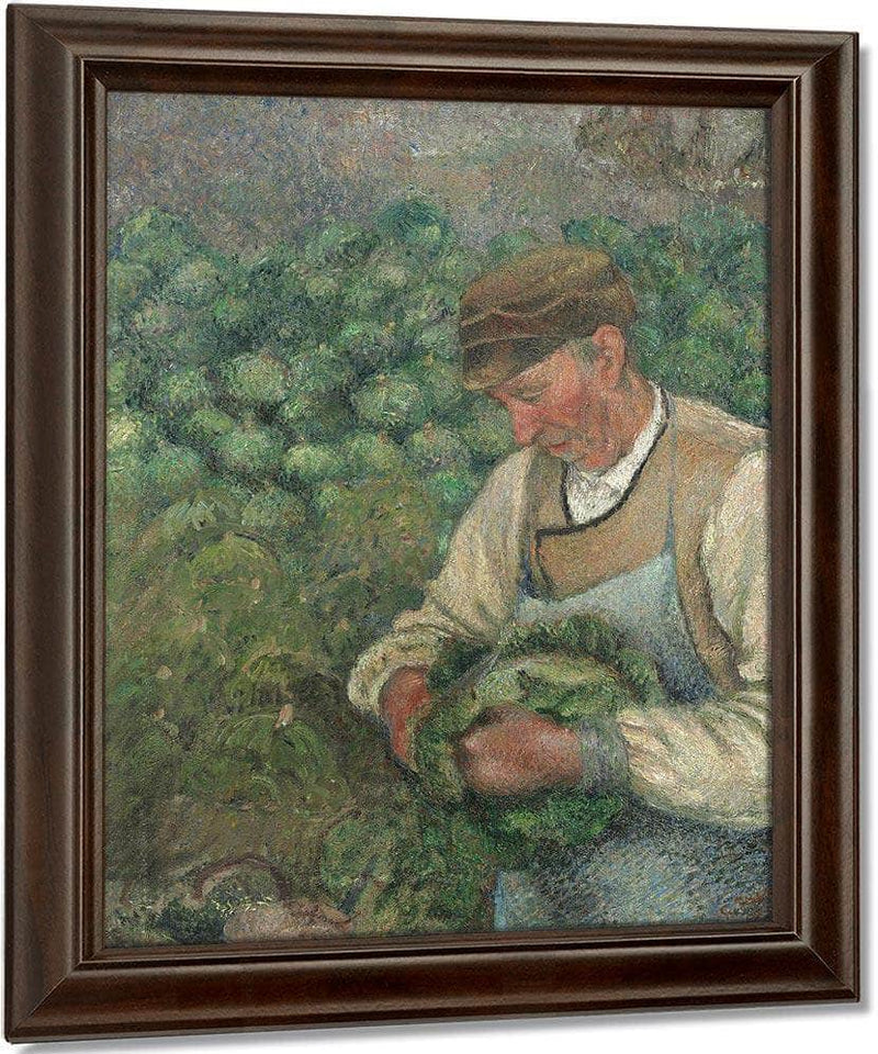 The Gardener Old Peasant With Cabbage By Camille Pissarro
