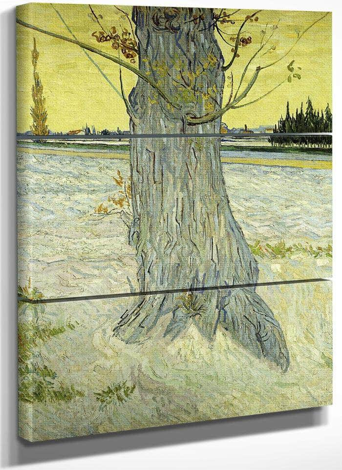 The Old Tree By Vincent Van Gogh