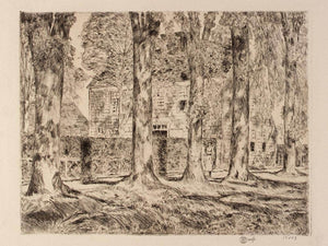 The Village Elms, Easthampton By Childe Hassam
