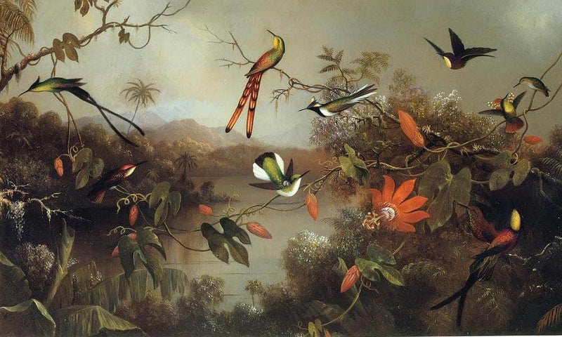 Tropical Landscape With Ten Hummingbirds By Martin Johnson Heade