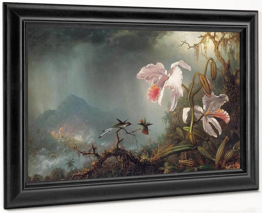 Two Fighting Hummingbirds With Two Orchids By Martin Johnson Heade