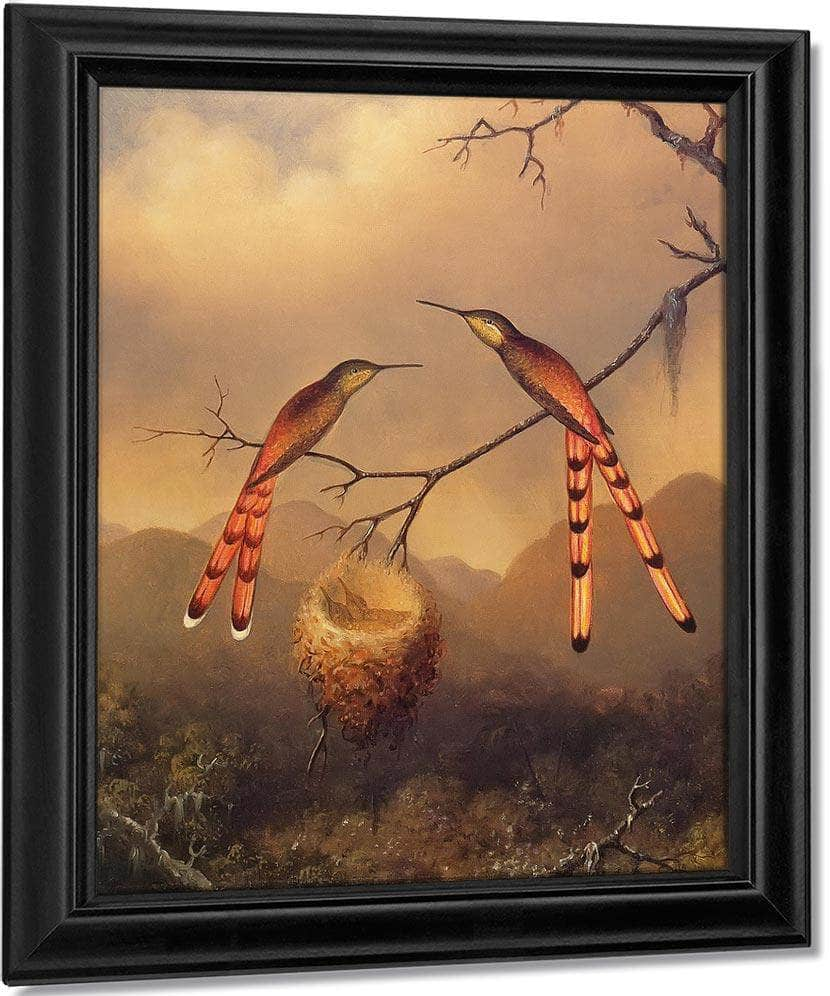 Two Hummingbirds With Their Young By Martin Johnson Heade