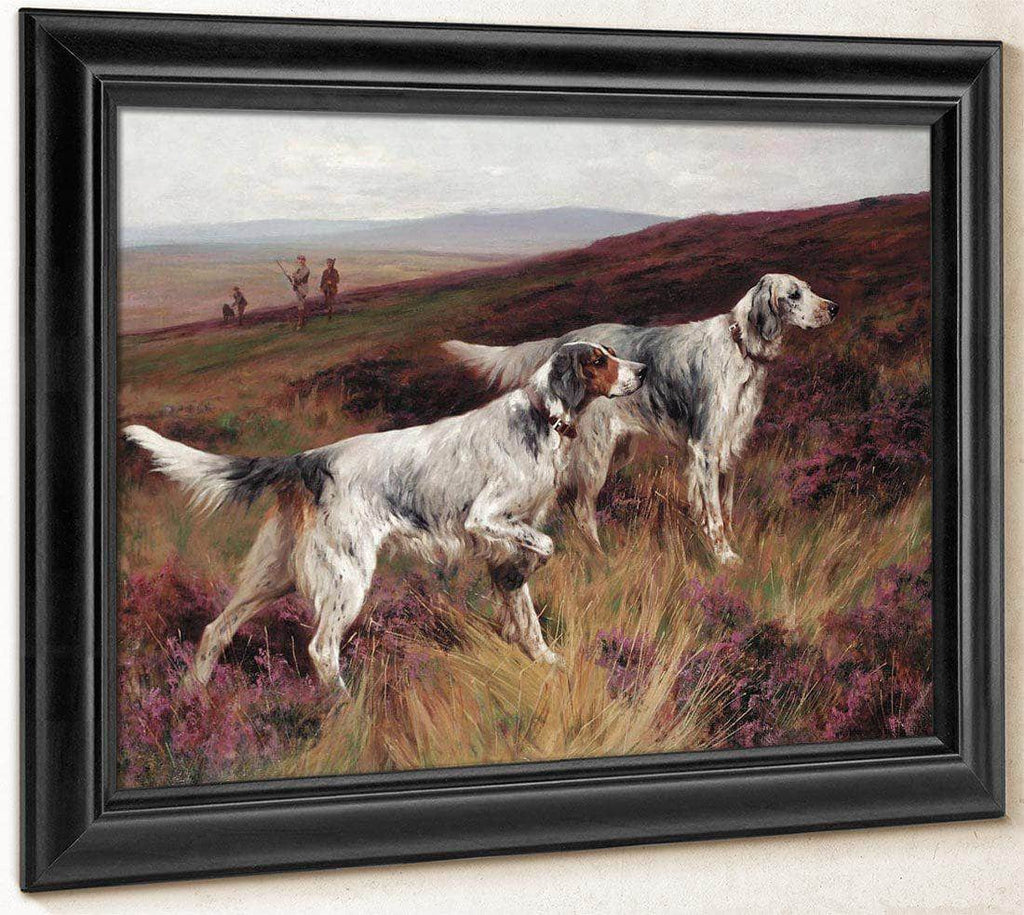 Two Setters On A Grouse Moor By Arthur Wardle