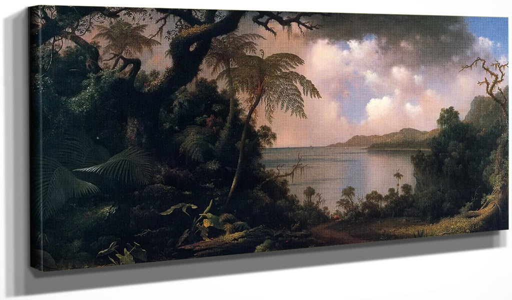 View From Fern Tree Jamaica By Martin Johnson Heade