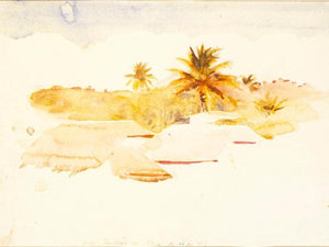 West Indies By Abbott Handerson Thayer