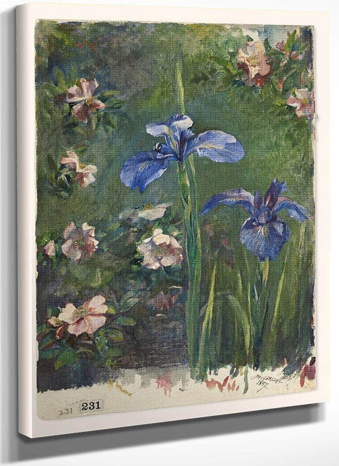 Wild Roses And Irises By John La Farge