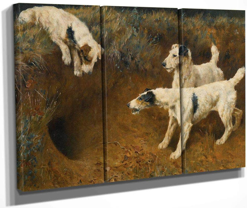 Wire Fox Terriers By A Badger Set By Arthur Wardle
