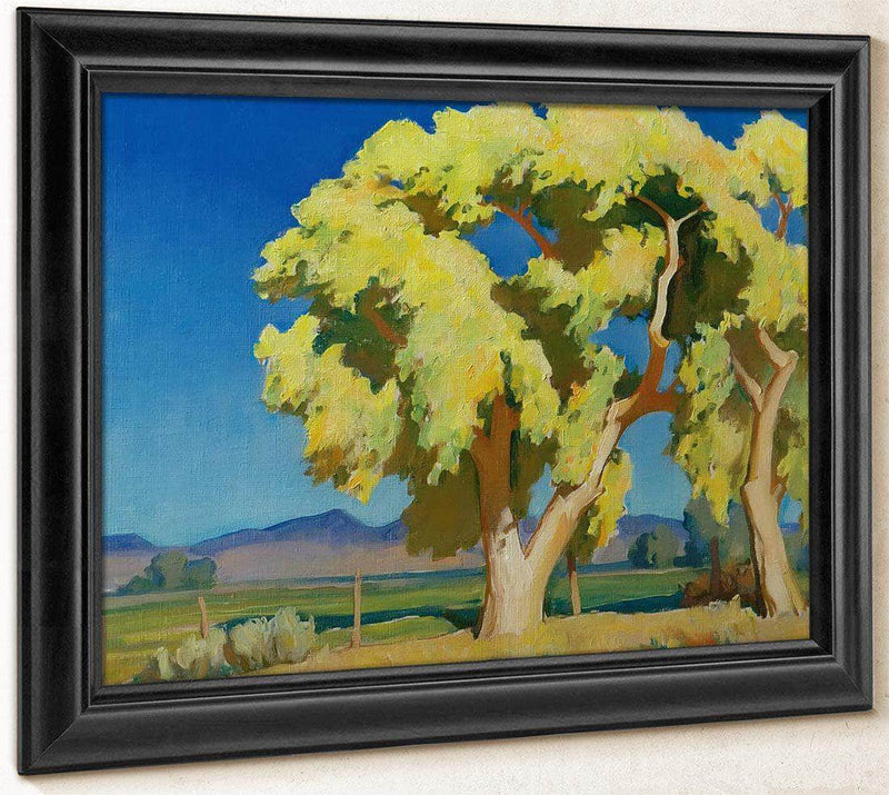 Young Cottonwoods By Maynard Dixon