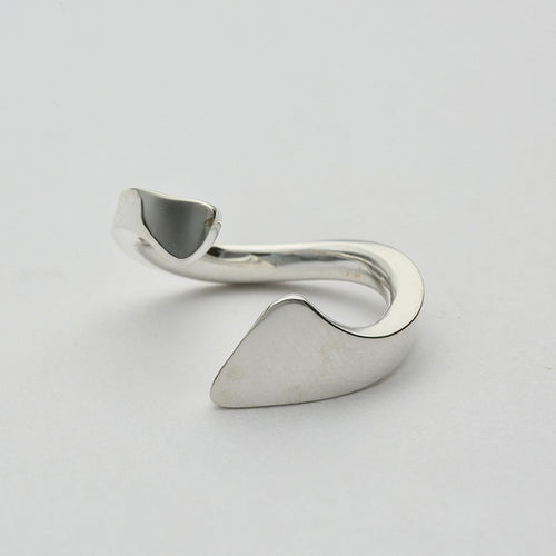 Silver925 Ring (96-8023)-Ring-Jewels Japan